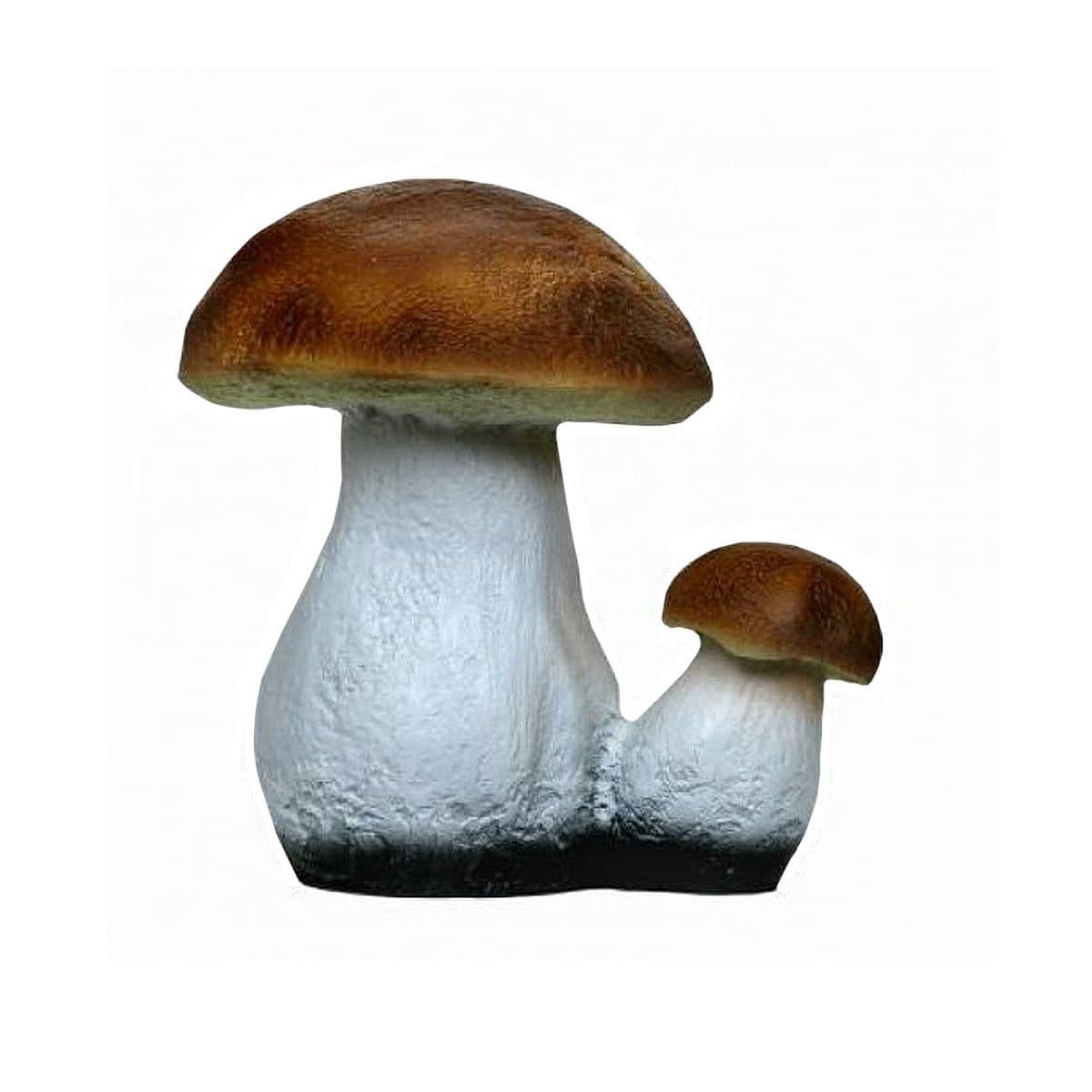 истечению времени маленький грибочек картинка небольшие деньги